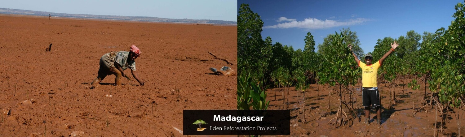 Island Madagaskar before and after with copyright Eden Reforestation Projects